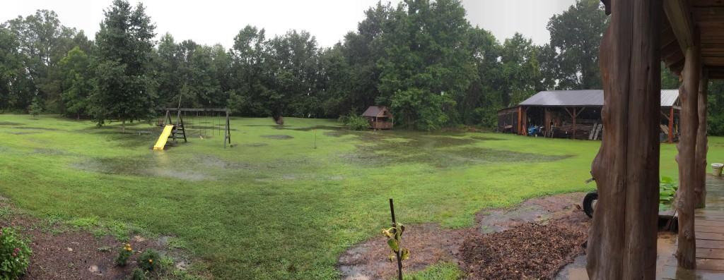 Wet 2014 summer
